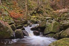 Ручеек Burbage пропуская через Gorge Padley в пиковом заречье Стоковые Изображения