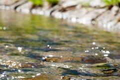 Ручей весной снял с малой глубиной поля, Польши стоковое изображение