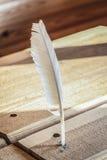 Ручка пера для записи Стоковое Фото
