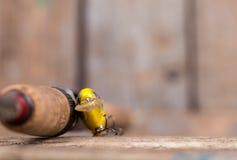 Ручка рыболовной удочки с прикормом на деревянном Стоковое Фото