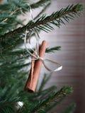 Ручка циннамона как украшение на рождественской елке стоковые изображения rf