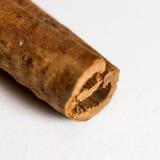 Ручка циннамона стоковая фотография