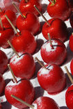 ручка яблока Стоковые Фотографии RF