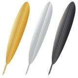 Ручка Quill Стоковые Фотографии RF