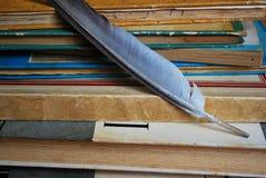 Ручка Quill на старых книгах стоковые фото