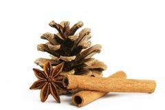 ручки звезды ctwo conifer конуса циннамона анисовки стоковые фото