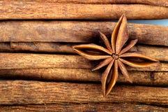 ручки звезды циннамона анисовки Стоковая Фотография