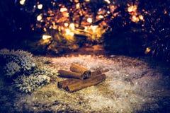Ручки циннамона в снеге на предпосылке запачканных ветвей света и ели с снегом Стоковая Фотография