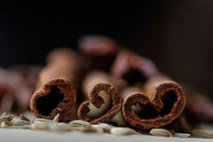 Ручки циннамона и семена фенхеля стоковая фотография