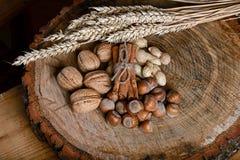 Ручки циннамона состава связали шнурок и 3 вида гаек, высушенных ростков на деревянной предпосылке, конца пшеницы вверх Стоковая Фотография RF