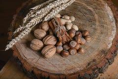 Ручки циннамона состава связали шнурок и 3 вида гаек, высушенных ростков на деревянной предпосылке, конца пшеницы вверх, место дл Стоковые Изображения