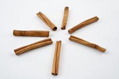 ручки циннамона Стоковая Фотография RF