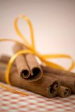 ручки циннамона Стоковое Изображение RF