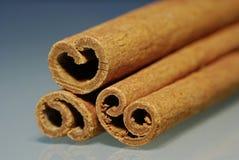 ручки циннамона 3 стоковые изображения rf