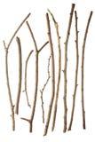 ручки Стоковая Фотография