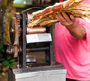 Ручной механизм для сжимать сок Стоковая Фотография