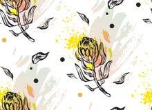 Ручной работы графическая абстрактная флористическая безшовная картина с составом protea цветет в пастельных цветах на белизне Стоковое Изображение RF