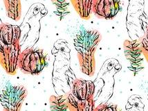 Ручной работы коллаж конспекта вектора безшовная картина при тропические попугаи, заводы кактуса и суккулентные цветки изолирован Стоковая Фотография RF