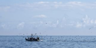 Рыбацкая лодка с чайками в океане Стоковая Фотография