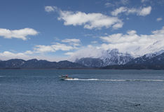Рыбацкая лодка в заливе Kachemak Стоковая Фотография