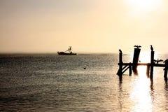 Рыбацкая лодка на заходе солнца с птицами на пристани Стоковые Фото
