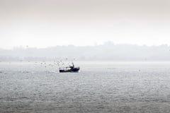 Рыбацкая лодка следовать чайками Стоковое Изображение RF