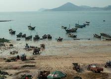 Рыбацкие лодки разгружают задвижку в Qingdao стоковое изображение rf