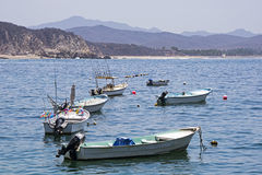 Рыбацкие лодки поставленные на якорь в заливе океана Стоковое Изображение RF