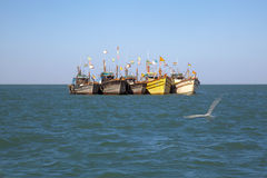 Рыбацкие лодки строки поставили оффшорное на якорь Стоковое фото RF