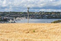 Рыбацкий поселок 002 поля пшеницы обозревая Стоковое Фото