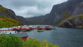 Рыбацкий поселок в островах Lofoten, Норвегии сток-видео