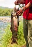 рыба держит человека Стоковые Фото