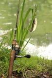 Рыбалка Стоковое фото RF