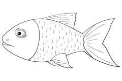 Рыба Чертеж плана иллюстрация штока