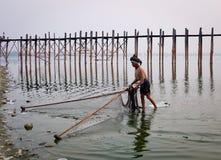 Рыба человека заразительная на озере в Мандалае, Мьянме Стоковые Фотографии RF