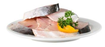 Рыба Стоковые Изображения RF