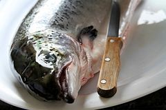 Рыба Стоковая Фотография RF
