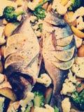 Рыба Стоковое Изображение RF