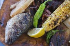Рыба Стоковое Изображение