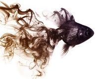 Рыбка от дыма стоковое фото rf
