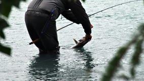 рыбная ловля задвижки и отпуска сток-видео