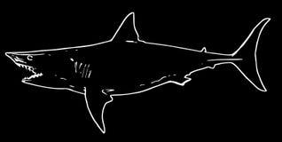 Рыбная ловля рыб акулы на черной предпосылке иллюстрация штока