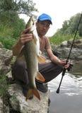 Рыбная ловля Barbel на реке стоковое изображение rf