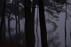 Рыбная ловля Sthobby приятное одно сделала с свежей водой и рыбной ловлей на перелётных птицах репортера новостей весны lakeorks Стоковое Фото