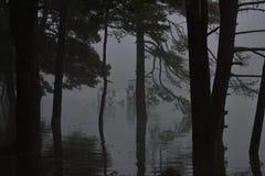 Рыбная ловля Sthobby приятное одно сделала с свежей водой и рыбной ловлей на перелётных птицах репортера новостей весны lakeorks Стоковая Фотография