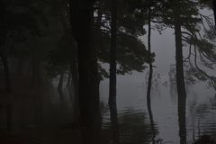 Рыбная ловля Sthobby приятное одно сделала с свежей водой и рыбной ловлей на перелётных птицах репортера новостей весны lakeorks Стоковое фото RF