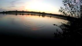 Рыбная ловля вечера сток-видео