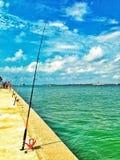 Рыбная ловля залива Стоковые Изображения