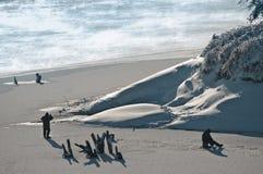 Рыбная ловля зимы Стоковые Фотографии RF