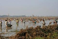 Рыбная ловля общины Стоковое Фото